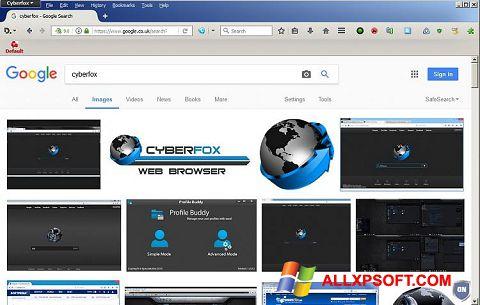 لقطة شاشة Cyberfox لنظام التشغيل Windows XP