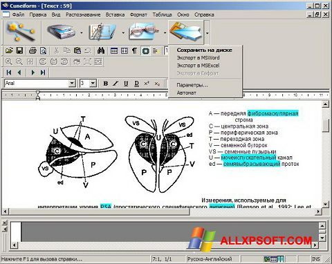 لقطة شاشة CuneiForm لنظام التشغيل Windows XP