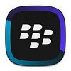 BlackBerry Link لنظام التشغيل Windows XP