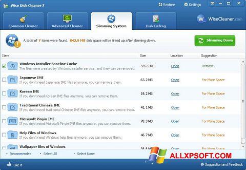 لقطة شاشة Wise Disk Cleaner لنظام التشغيل Windows XP