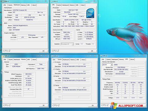 لقطة شاشة CPU-Z لنظام التشغيل Windows XP