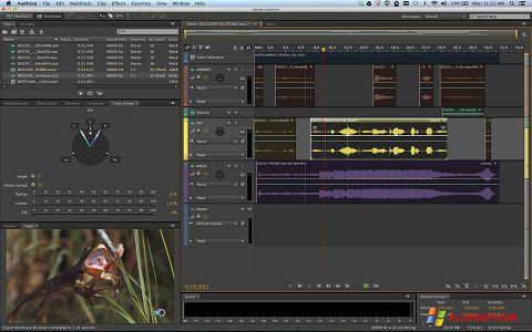 لقطة شاشة Adobe Audition لنظام التشغيل Windows XP