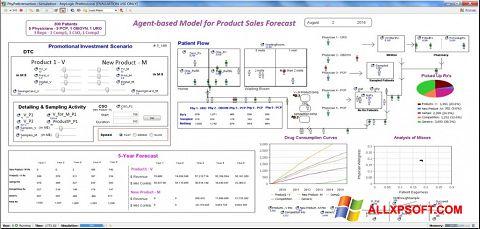 لقطة شاشة AnyLogic لنظام التشغيل Windows XP